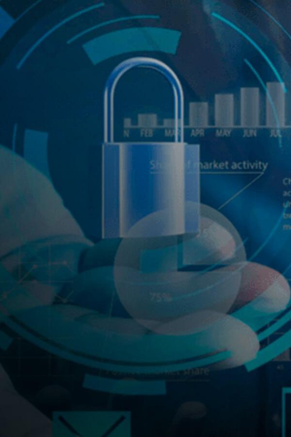 Segurança da Informação VSI
